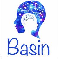 Basin Web Design Logo